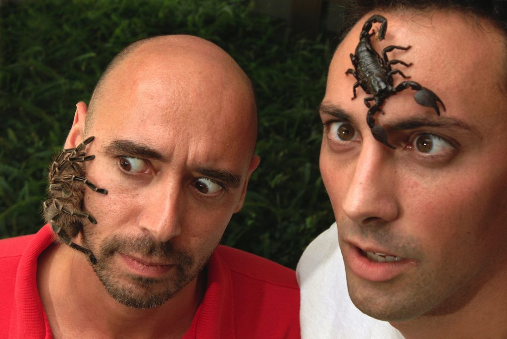 Male scientist with tarantula (left) and scorpion (right) on their faces