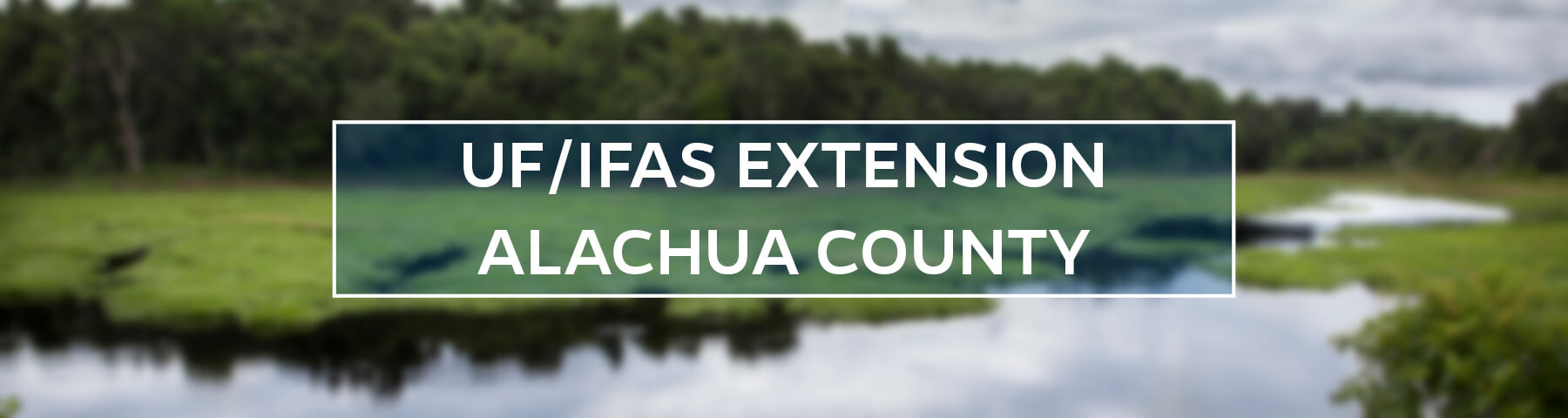 UF/IFAS Extension Alachua County