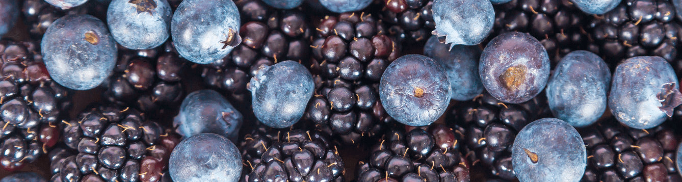 blueberry and blackberry fruit
