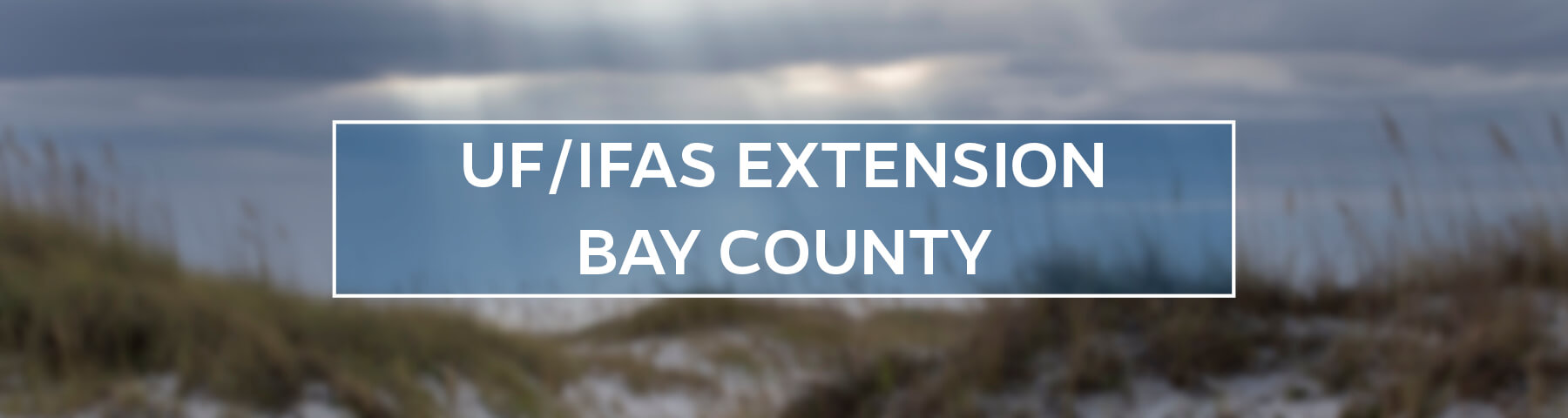UF/IFAS Extension Bay County
