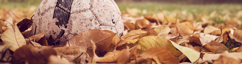 soccer ball in leaves