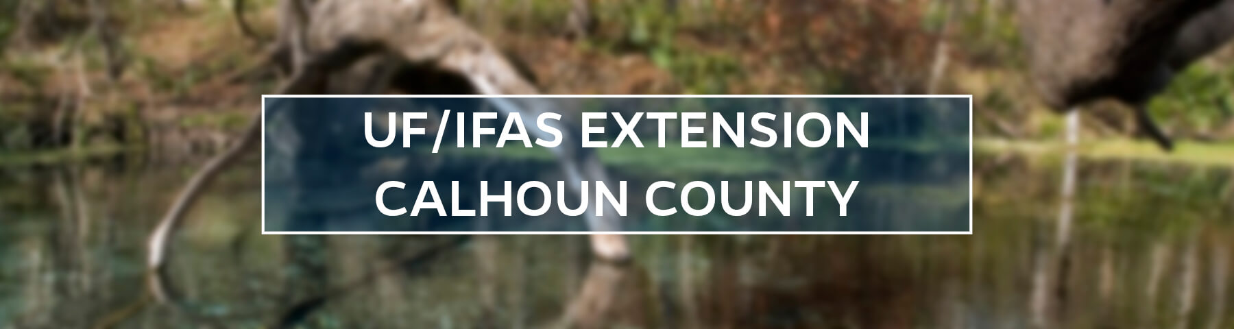 UF/IFAS Extension Calhoun County