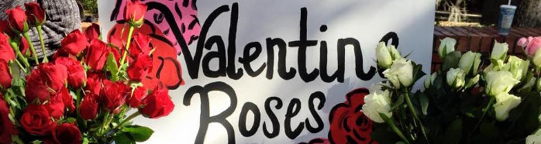 valentine's roses for alpha zeta rose sale