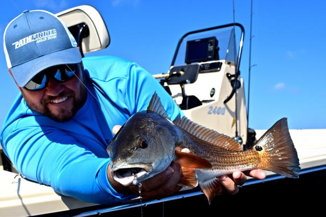 A catch and release redfish : Photo Capt. Jay Withers