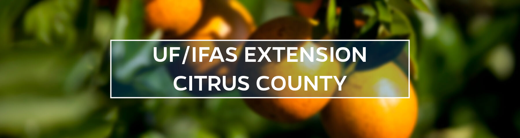 UF/IFAS Extension Citrus County
