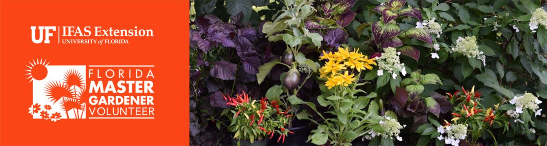 Florida Master Gardener Book Club