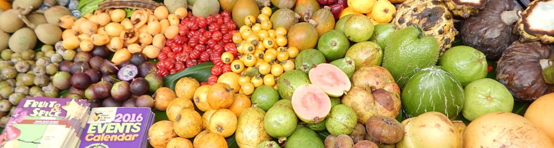 Fruit display Fruit n Spice Park