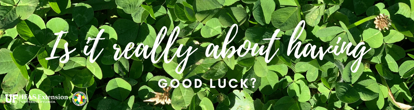 "A patch of clover with the words ""Is it really about having good luck?"""