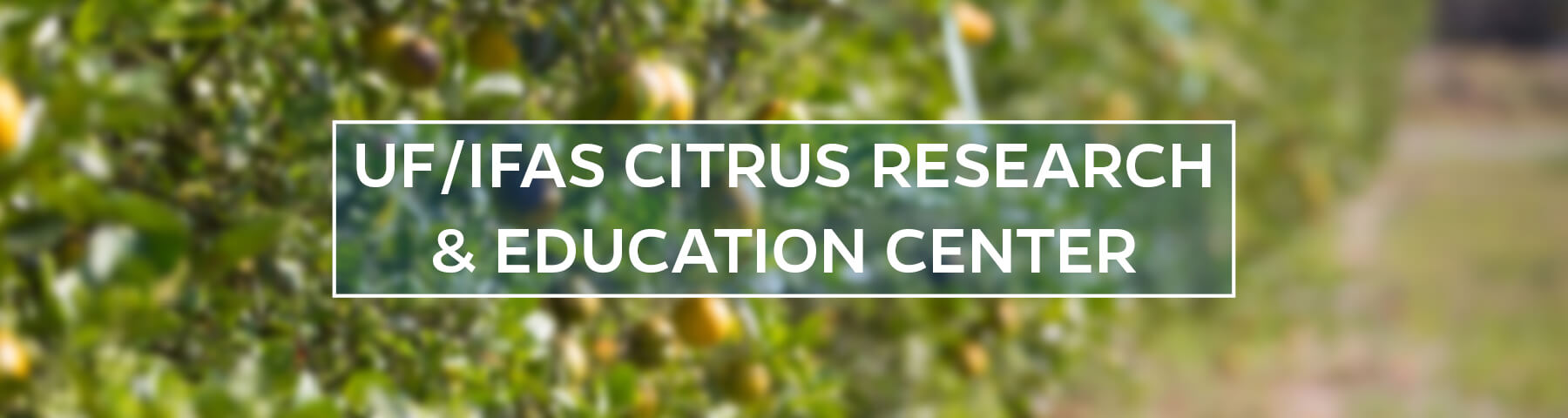 UF/IFAS Citrus Research and Education Center