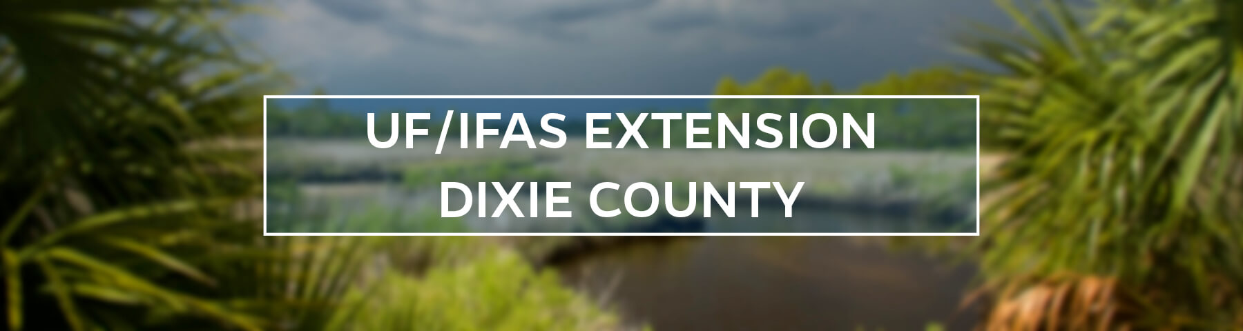 UF/IFAS Extension Dixie County