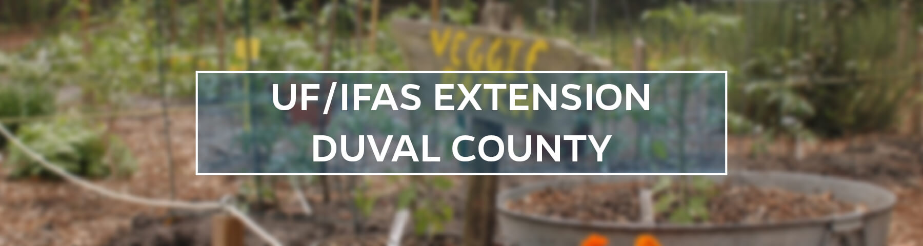 UF/IFAS Extension Duval County