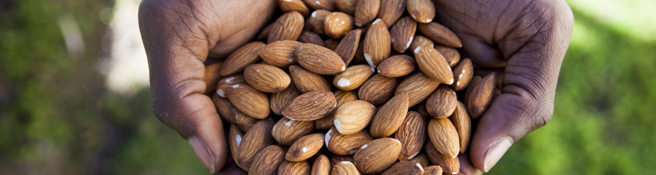 Two handfuls of almonds