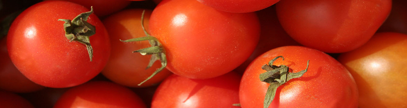 Photo of piled tomatoes.