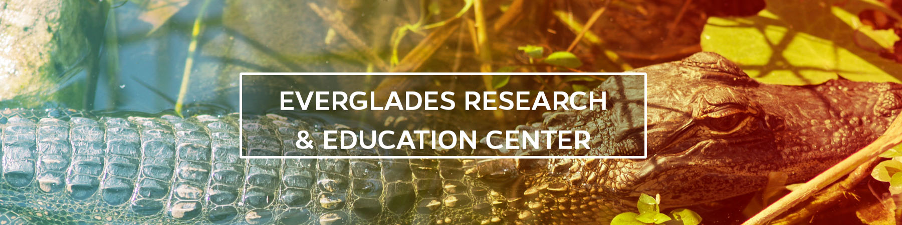 Everglades Research & Education Center
