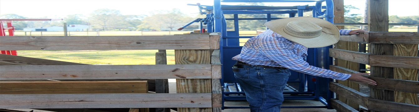 Inspecting livestock facilities for safety