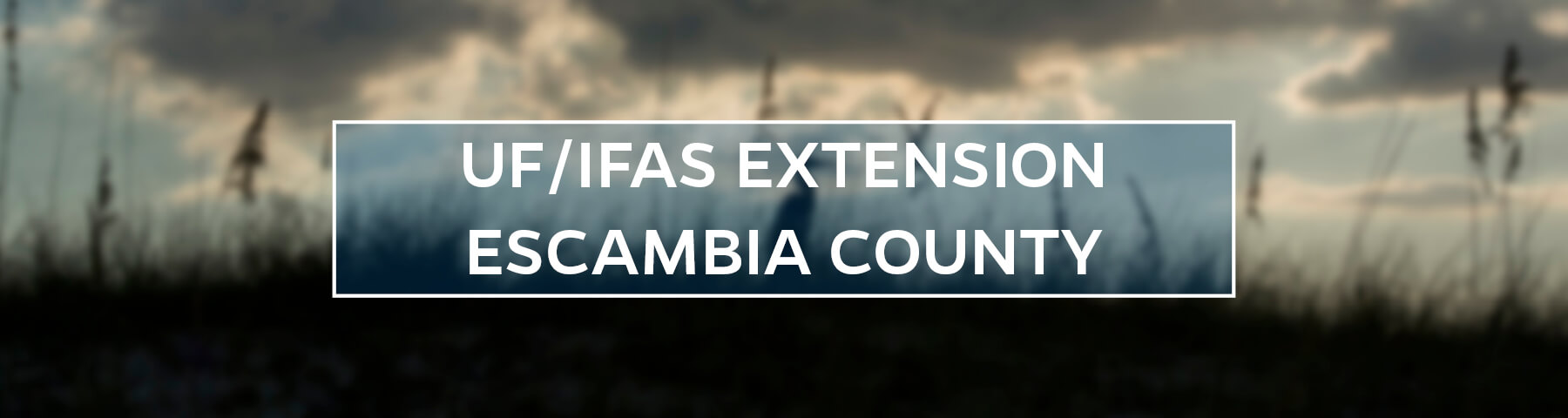 UF/IFAS Extension Escambia County
