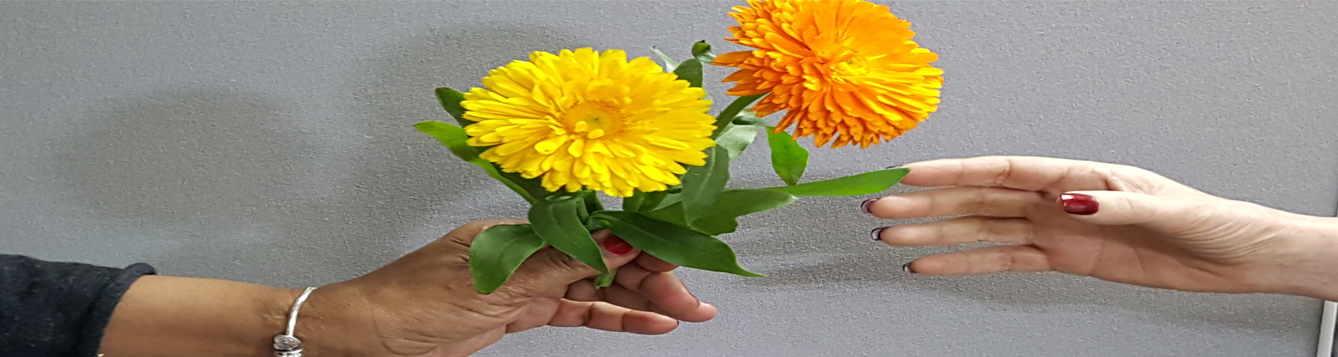 hand of one person offering a yellow flower and an orange flower to another person's hand