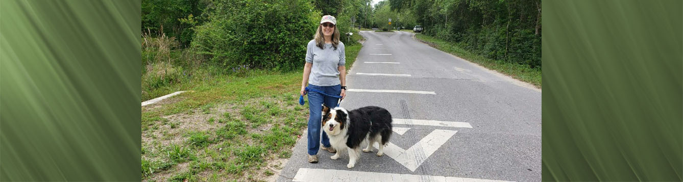 Woman wearing cap, grey shirt, blue jeans. Walking black and white dog. On paved country road