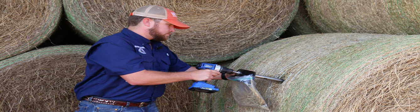 Hay sampling with probe