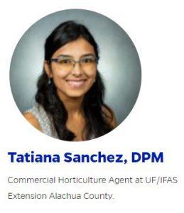 tatiana sanchez profile image