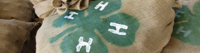 sack of potatoes with 4-H emblem
