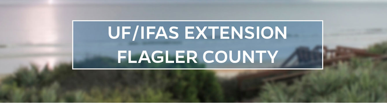 UF/IFAS Extension Flagler County