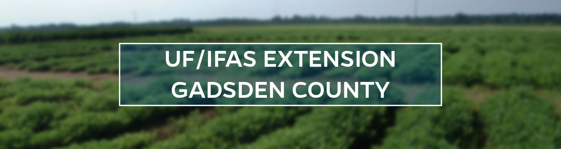 UF/IFAS Extension Gadsden County