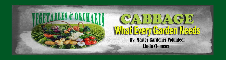 Veg Orchard background