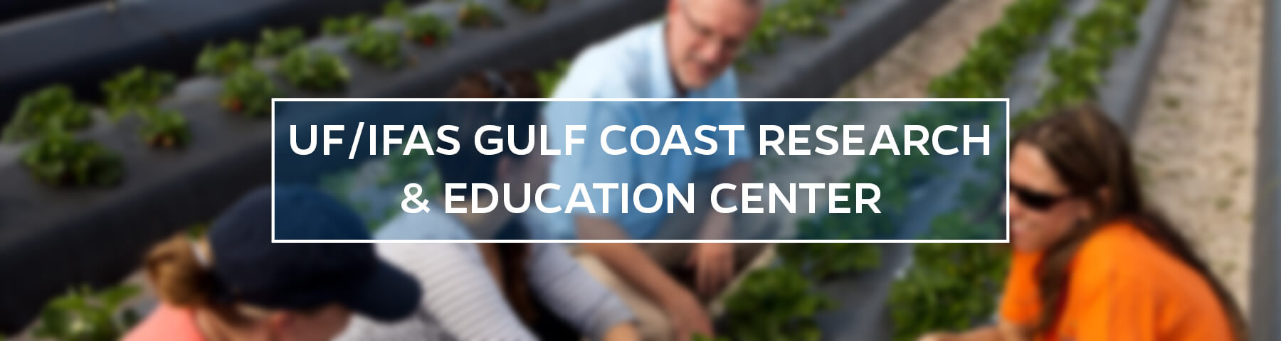 UF/IFAS Gulf Coast Research and Education Center