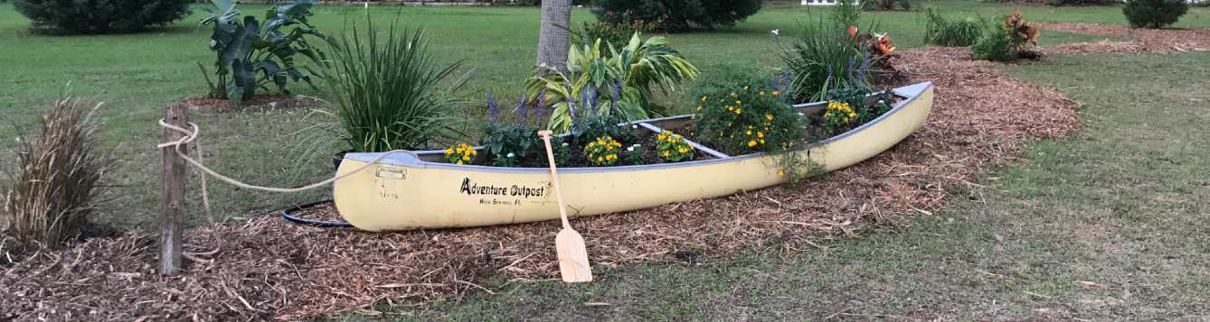aluminum canoe planted with yellow and purple flowers
