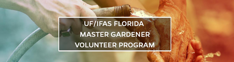 UF/IFAS Florida Master Gardener Volunteer On Blogs.IFAS Header