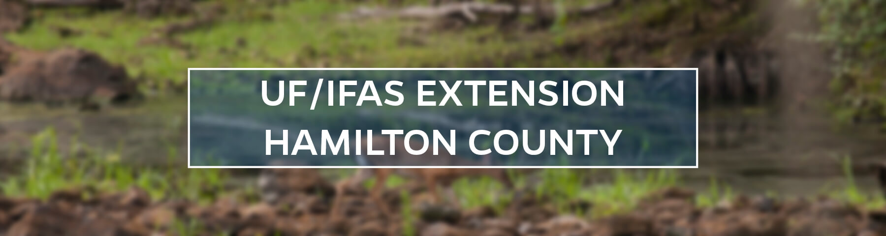 UF/IFAS Extension Hamilton County