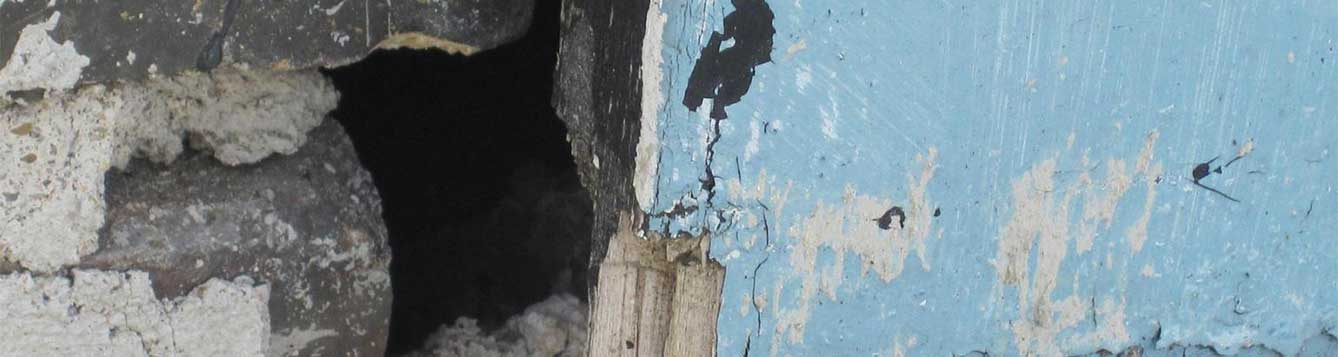 Photo of hole in wall where rodents can enter