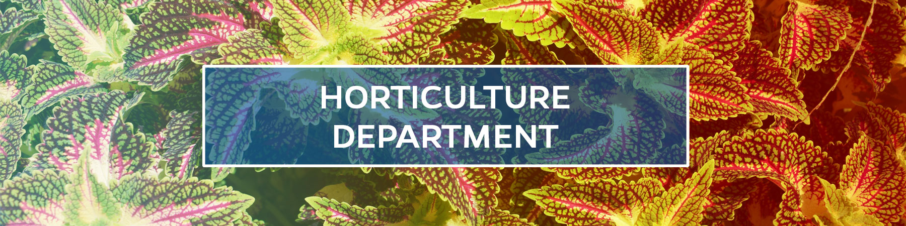 Horticulture Department