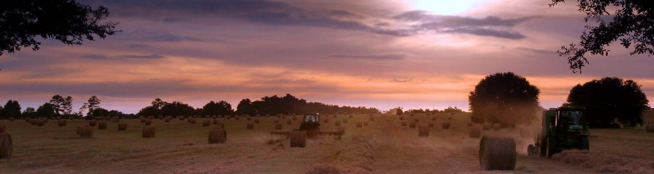 landscape view of tractors working in hay field as the sun sets