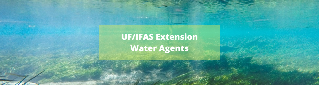 Water Agents Blog