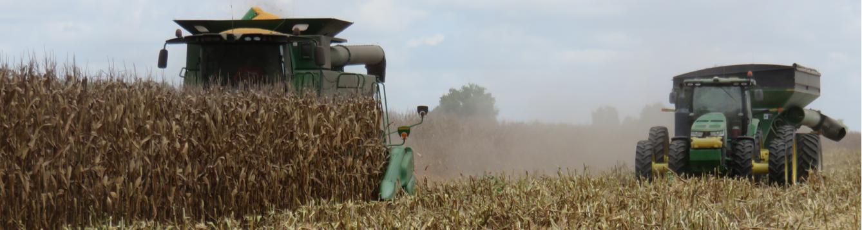 Corn Harvest Header