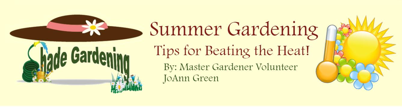 Summer Gardening 2nd story July 2020