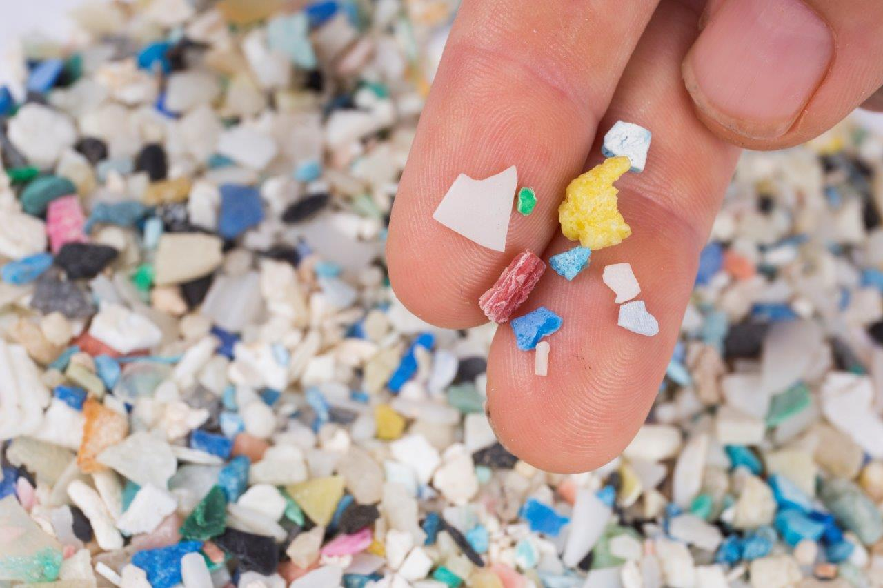 Microplastics range in size from microscopic fibers and beads to these larger fragments.
