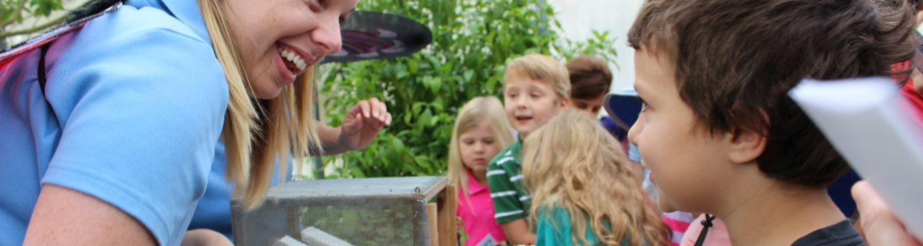 Children learn about bees and flowers at the Landscape and Garden Fair