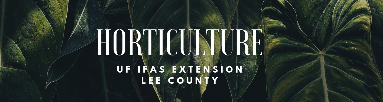 Horticulture | UF IFAS Lee County Extension