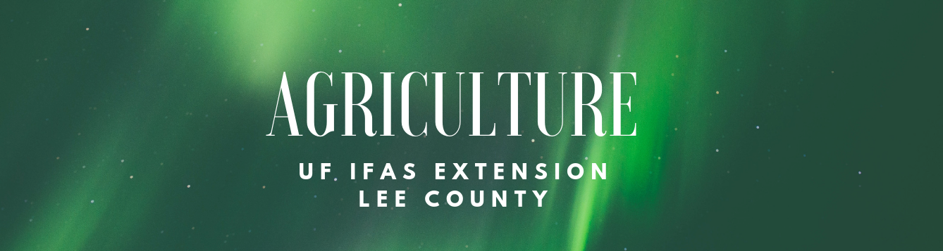 Agriculture at UF/IFAS Lee County Extension