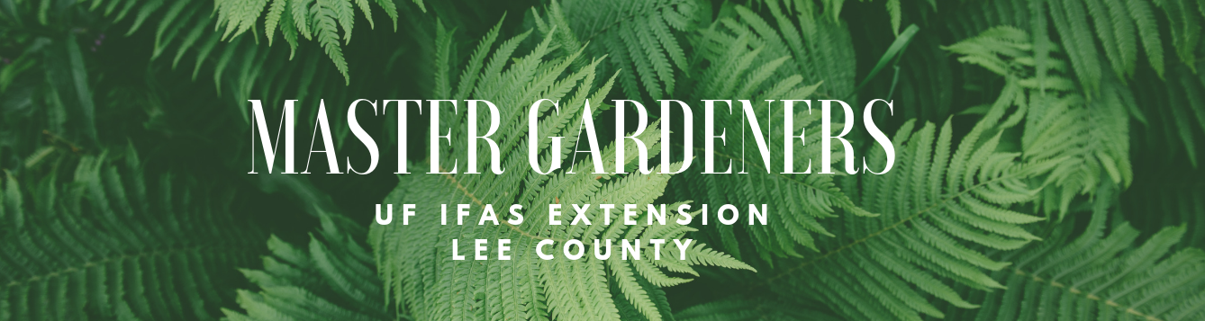 Master Gardener | UF IFAS Lee County Extension