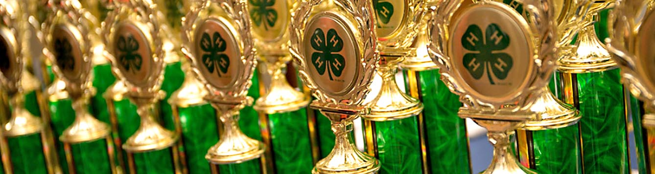 4-H County Events