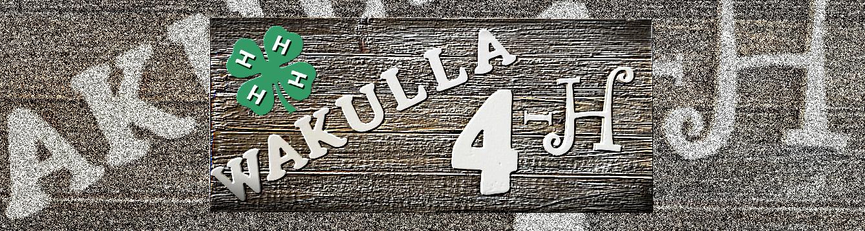 4-H Wakulla feat