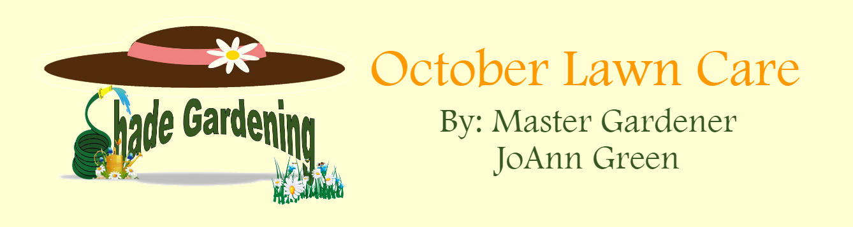 Shady Gardening feat October 2019
