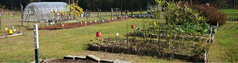Master Gardener Volunteer Program 2020 feat