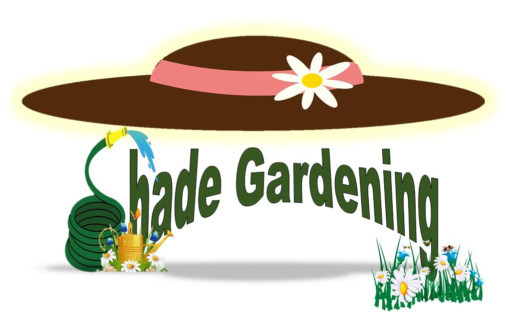 Shady Garden insert