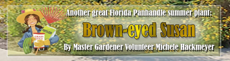 Master Gardener: Brown-eyed Susan article banner