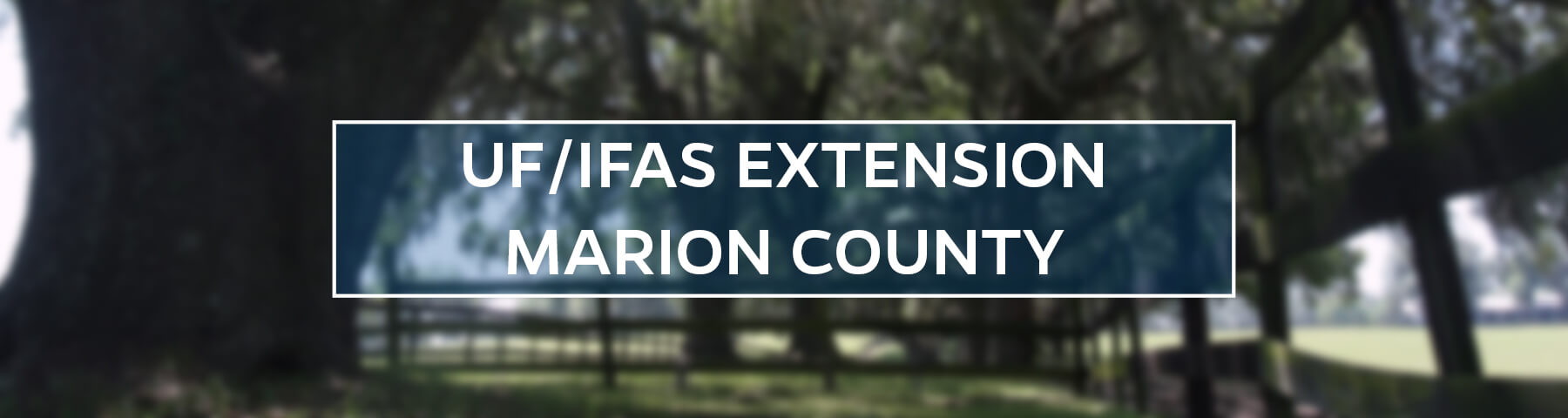 UF/IFAS Extension Marion County